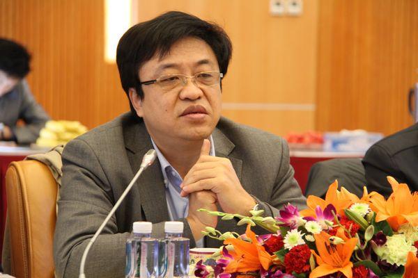 经济研究部部长冯飞-中国矿联高级资政委第三次会议在京召开图片